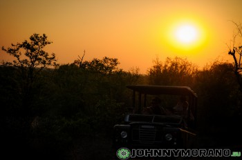 johnny_morano_krugerpark_2013-005