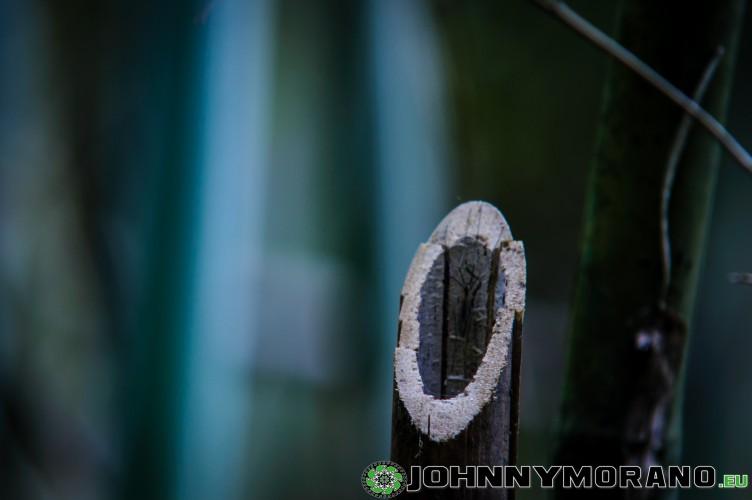 johnny_morano_nepal_2013-028