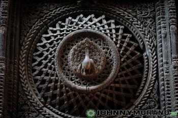 johnny_morano_nepal_2013-096